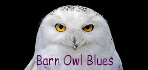 Barn_Owl_Blues